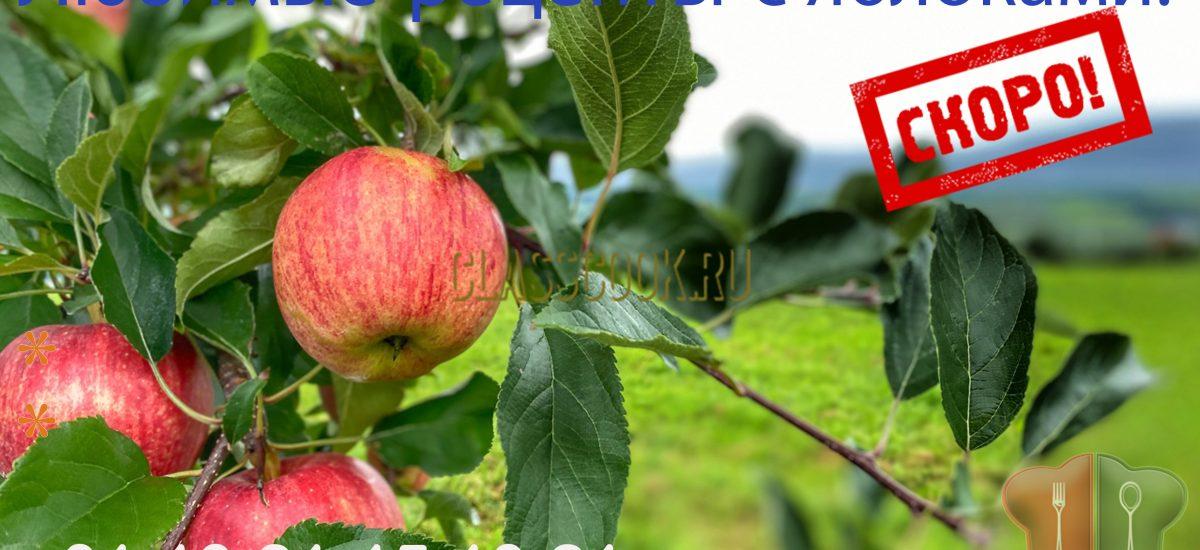 Рецепты с яблоками.